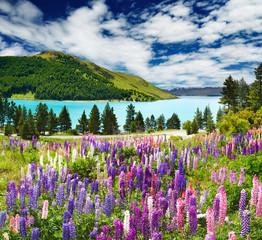 Panel Szklany Eko Lake Tekapo, New Zealand