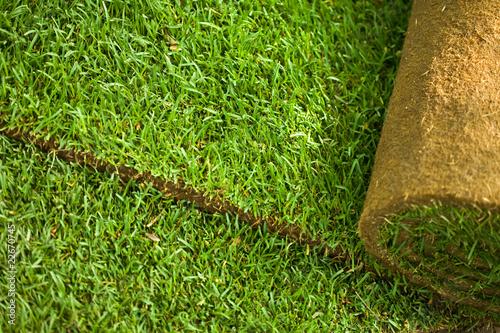 Fotografía Turf grass roll background