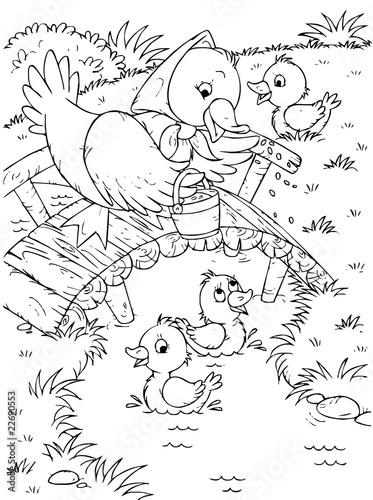 kaczka-i-kaczuszki-kolorowanka