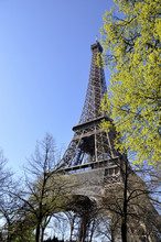 The Eiffel Tower In Spring #3