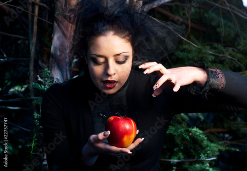 Fotografie, Obraz  stepmother casts a spell over the apple