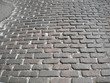 Brick-paved street