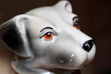 Porcelains Dog