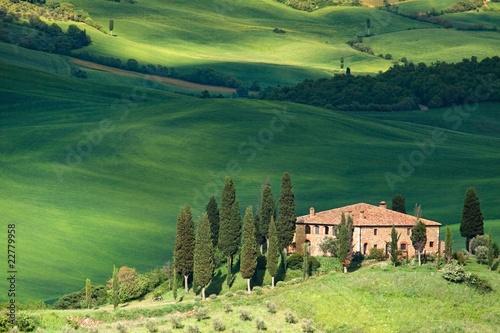 Papiers peints Toscane Tuscany landscape - belvedere