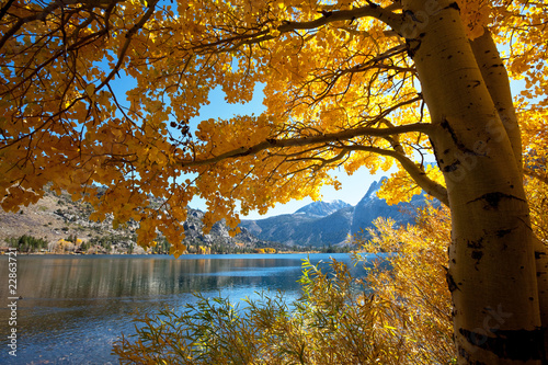Autumn lake - 22863721