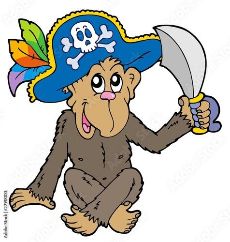 Photo sur Toile Pirates Pirate monkey