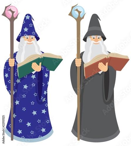 Платно Wizard