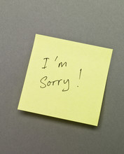 I`m Sorry On An Adhesive Note
