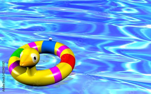 Papera Salvagente in Acqua-Duck Jacket in Water