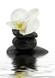 Pyramid of stones and white orchid on white background