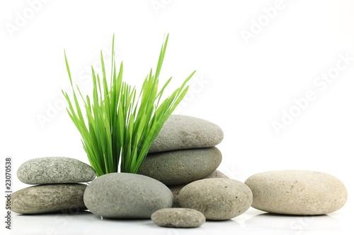 Zen stone with fresh grass Wallpaper Mural