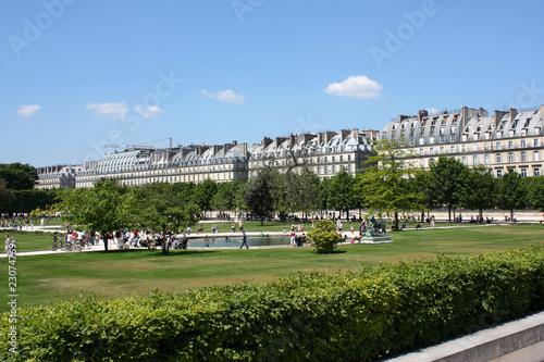 Jardin Des Tuilerie Et Rue De Rivoli En Arriere Plan Paris Buy