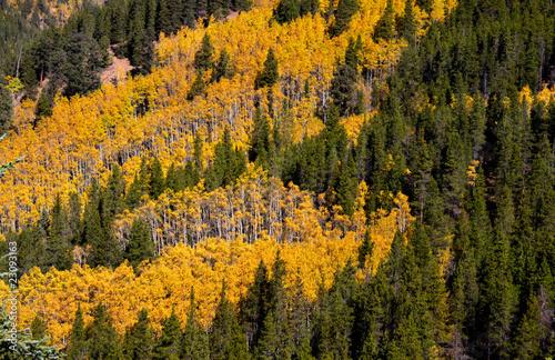 krajobraz-gorski-z-lasem-w-jesiennych-kolorach