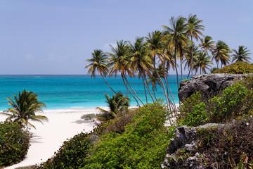 Fototapeta Tropical caribbean beach / Bottom Bay / Barbados