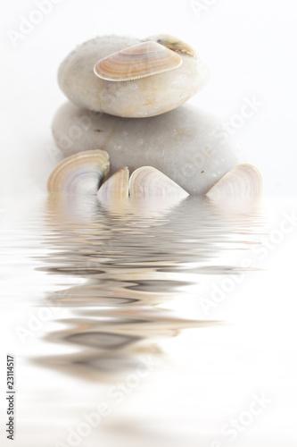 Cadres-photo bureau Zen pierres a sable Galets et coquillages