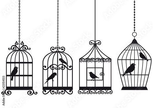Poster Vogels in kooien vintage birdcages with birds