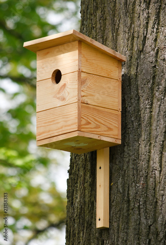 Photographie wooden birdhouse on the tree