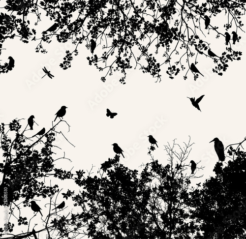 Printed kitchen splashbacks Birds on tree tree
