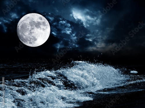 Poster Rivière de la forêt full moon over the night sea