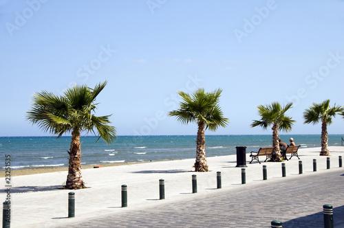 Foto op Canvas Cyprus Seaside Avenue