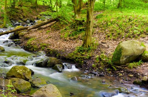 Fototapety, obrazy: Rocky river