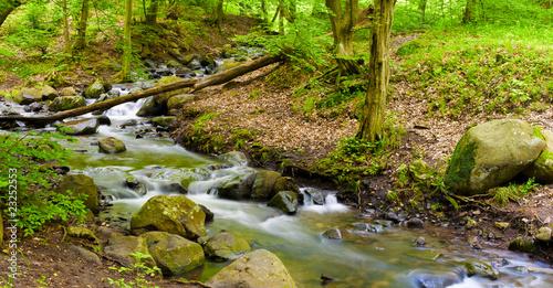 Fototapety, obrazy: Mountain river