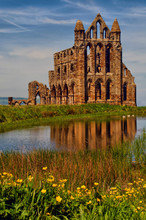 View Of Whitby Abbey Beyond Th...
