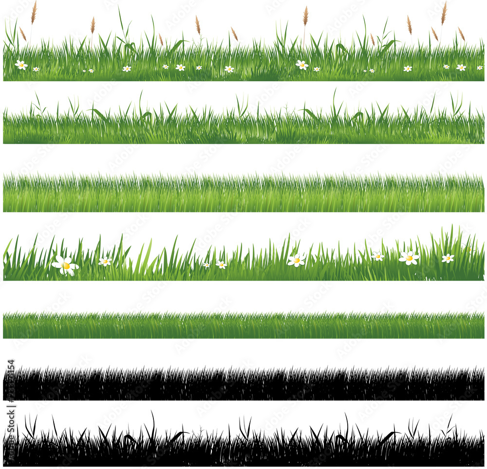 Fototapety, obrazy: Green grass collection