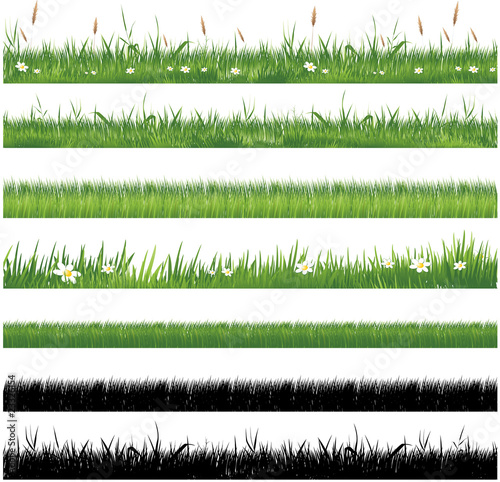Green grass collection - 23326154