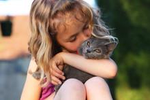 Chaton Chartreux Dans Les Bras D'un Enfant