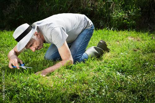 Weird gardener. Fototapet