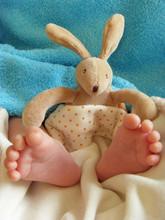 Pieds De Bébé Et Son Doudou Lapin