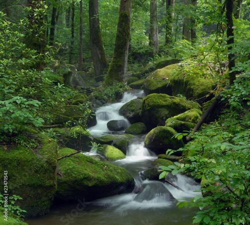Foto-Kissen - Mossy waterfall
