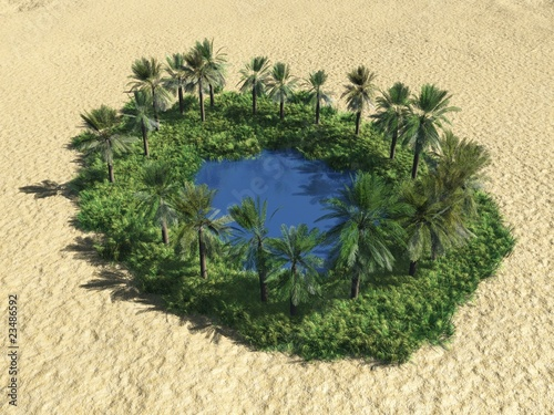 Poster de jardin Desert de sable oasis in the destert