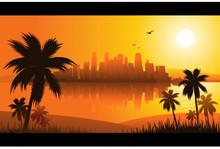 Miami Summer Background