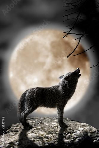 Lobo Aullando A La Luna Buy This Stock Photo And Explore Similar