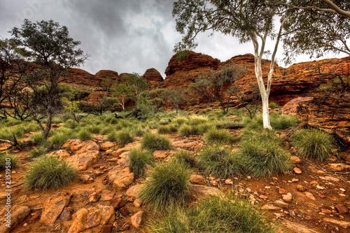 Foto op Canvas Australië australian outback
