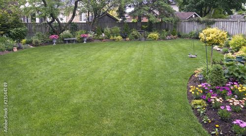 Fotografija Backyard