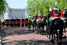 Mounted Troopers From Household Cavalry