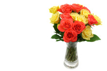 Roses In A Vase Isolated