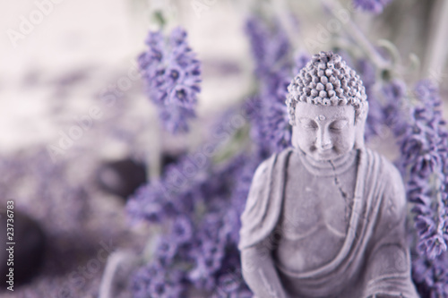 Photo  Buddha bei Zen Meditation,  Massage Steine, Lavendel