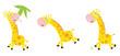 Vector cartoon yellow giraffe in 3 poses
