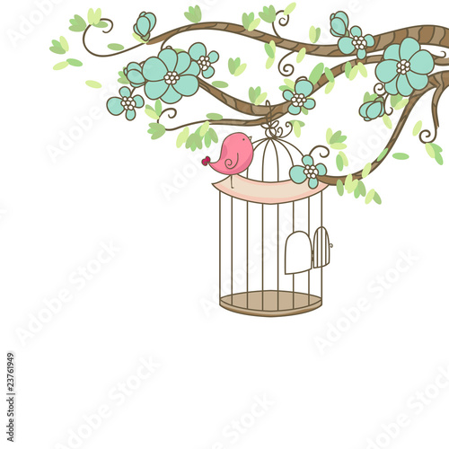 La pose en embrasure Oiseaux en cage bird and birdcage