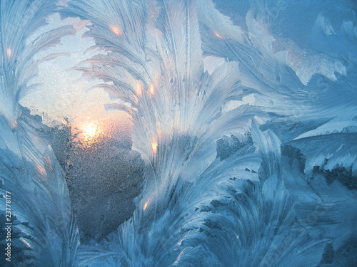 frost and sun Fototapet