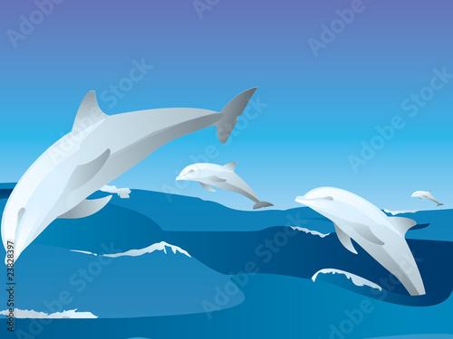 Staande foto Dolfijnen Delfini