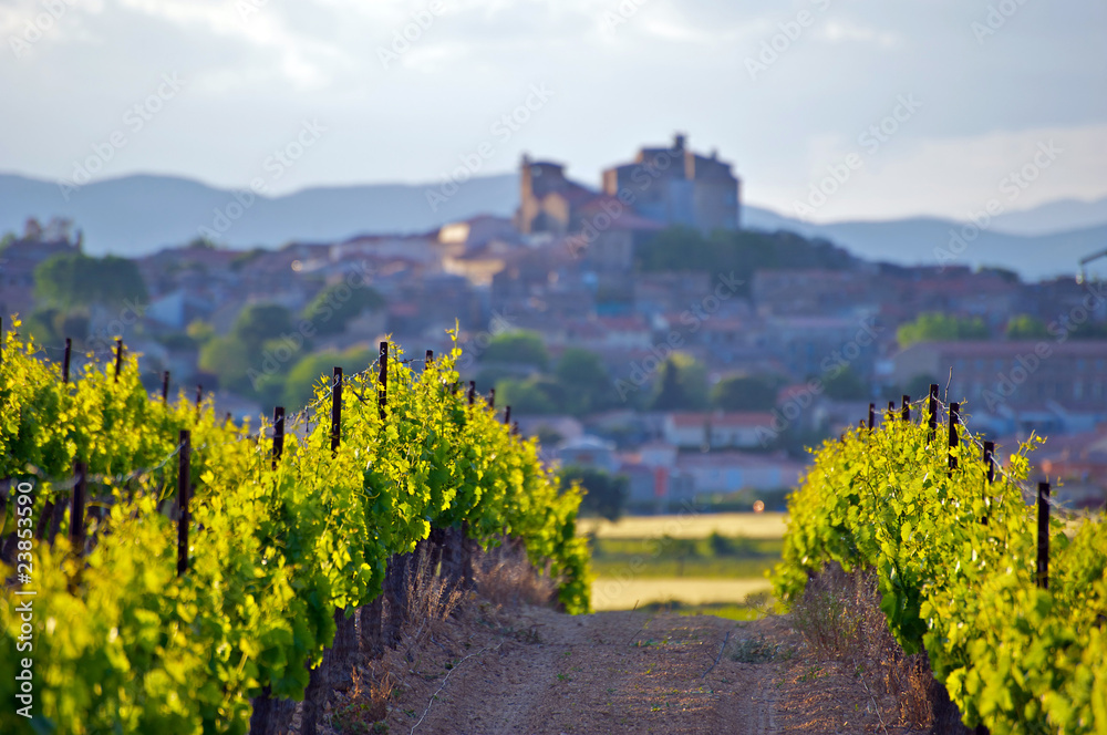 Fototapety, obrazy: The Chateau of Puissalicon in the Languedoc