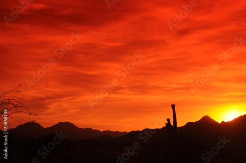 Fototapety, obrazy: Arizona Sunset