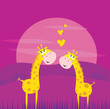 Two yellow african giraffes in love. VECTOR ILLUSTRATION