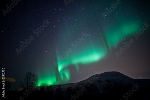 Photo  Aurora Borealis curtains rippling in the sky