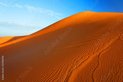 Foto op Aluminium Koraal Desert landscape, Sahara, Africa